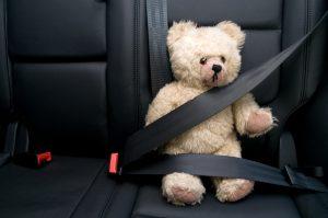 דובי חגור בחגורת בטיחות